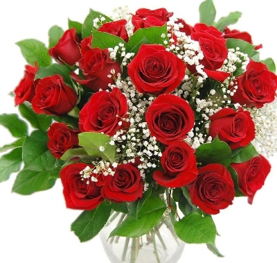 Classic 12 Red Roses Bouquet with Gypsophilia