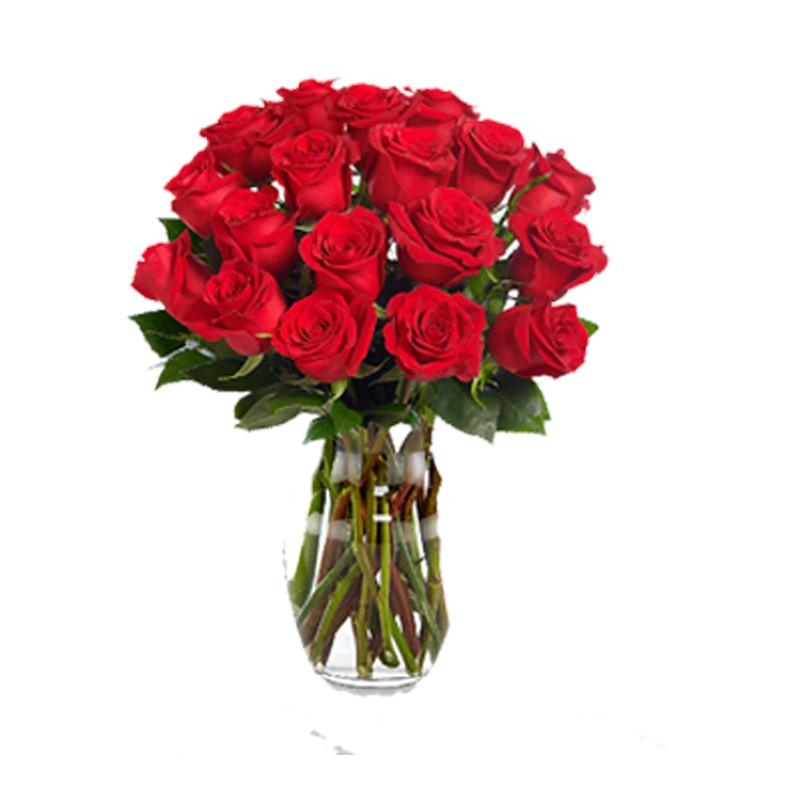 red roses with valentine's card  flowers delivery 4 u