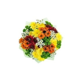 Mix Chrysanths bouquet