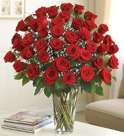 Five Dozen Red Roses