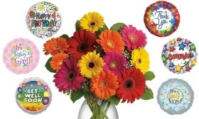 12 Mixed Gerberas with Choice of Balloon