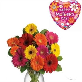 12 Mix Gerbera with Mother's day Balloon