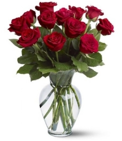 Dozen 40cm Red Roses in a gift wrap