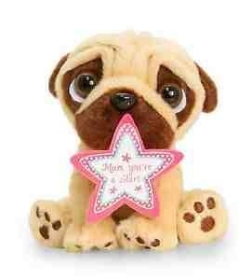 'Mum you're a star' Teddy bear