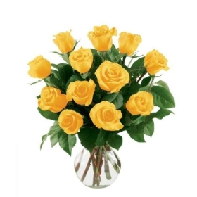 12 Yellow Roses in a gift wrap